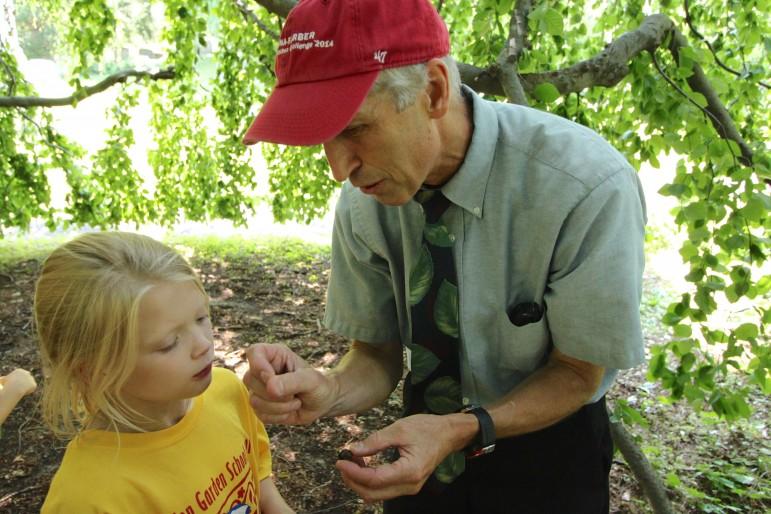 Dave Barnett, president of Mount Auburn Cemetery, shows a camper a beech nut from the weeping beech.