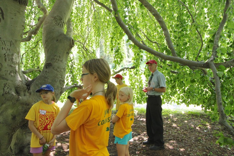 Mount Auburn Cemetery President Dave Barnett, right, brought the entire group of campers inside a weeping beech tree.