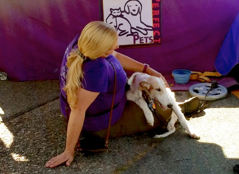 A woman and her dog beat the heat under a tent at the 15th annual Faire on the Square.