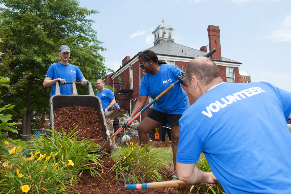 Tufts sent 50 volunteers to work on landscaping projects at the Dimock Center in Roxbury.